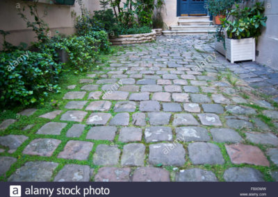 photograph-of-a-cobblestone-courtyard-garden-in-paris-F8X0WW